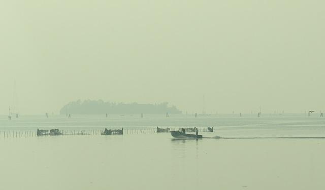Misty morning on the Venice estuary.