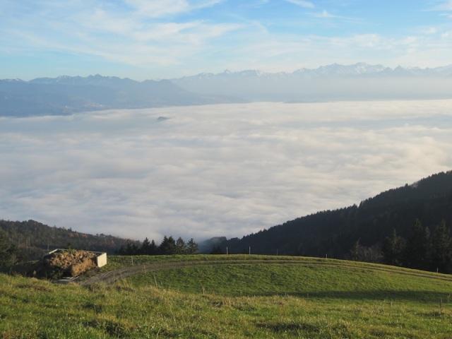 10 valley fog