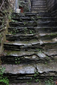 In the region there are extensive deposits of mudstone, just the material for step and house building.