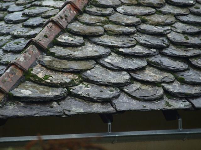 Handmade mudstone tiles.