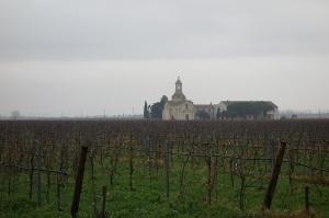 Vineyard, church and farmstead.