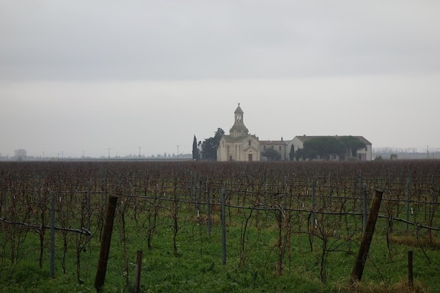 Vineyard, church and farmstead.