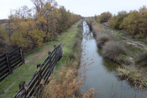 One of the many irrigation channels in the Camargue.  It would be interesting to kayak down this canal and in the process get close to nature.