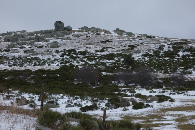The granite tors today reminded me of Mt Buffalo in the Victorian Alps of southern Australia.