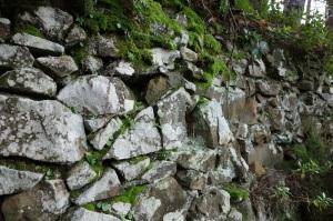 Retaining terrace wall.