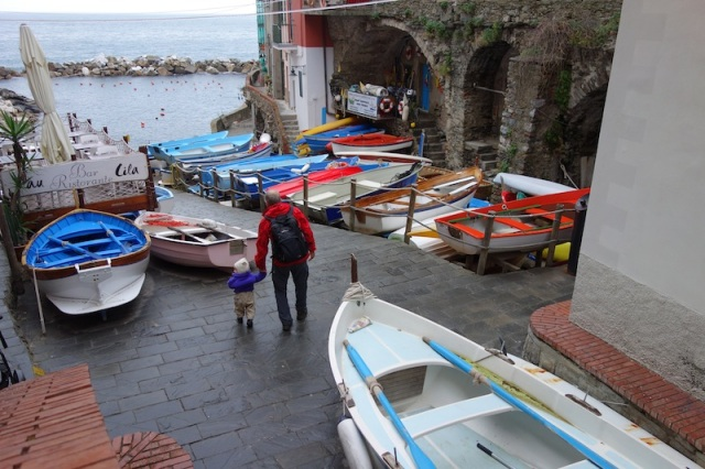 The small picturesque port of Riomaggiore.