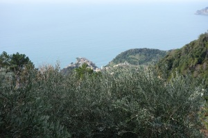 High above Corniglia.