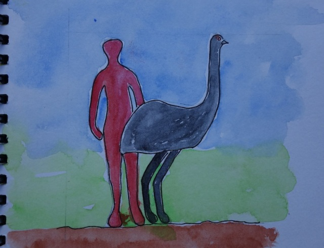 A sketch showing the size of an emu. Emus can attain the height of 2 metres and weigh up to 70 kilograms.