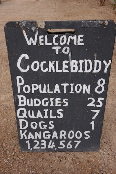 Sign at Cocklebiddy Roadhouse warning of kangaroo numbers. A budgie is a small grass parrot and they can flock in their thousands.