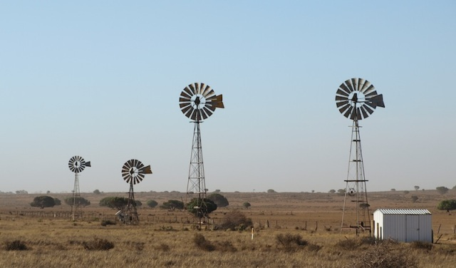 Windmills. Technically these are not windmills but windpumps; a mill grinds grain.