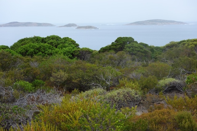 Wonderful coastal scenery.