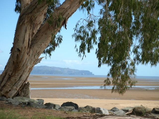 Low tide Shoal Point near Mackay.