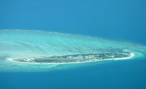 Coconut Island/Poruma