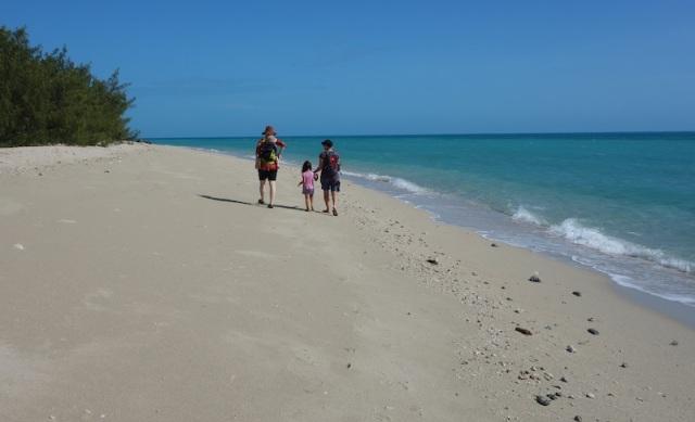 Beachcombing on Coconut Island.