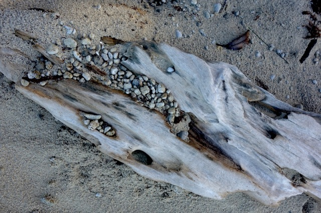 Pumice and wood.
