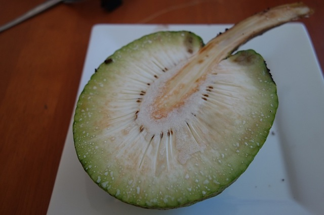 Breadfruit exposed. A mature breadfruit can reach 20 cm in diameter and can weigh up to 4kg.