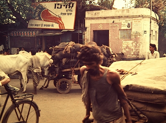 The down-trodden labouring class destined to a life of poverty. What is he thinking? Note the cart load of buffalo carcasses in the background.