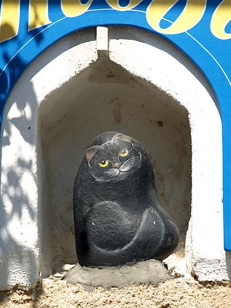 Artistic cat in a nook.