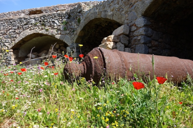 Dead cannon at the fortress. Resting in the poppies is the best place for it.
