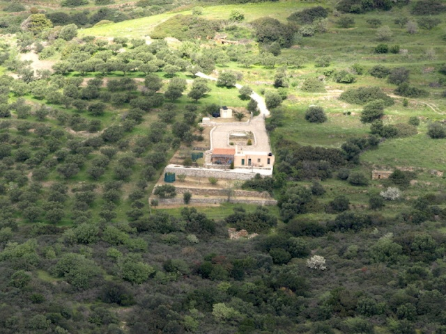 The Stavli cottage with its almond and olive trees.