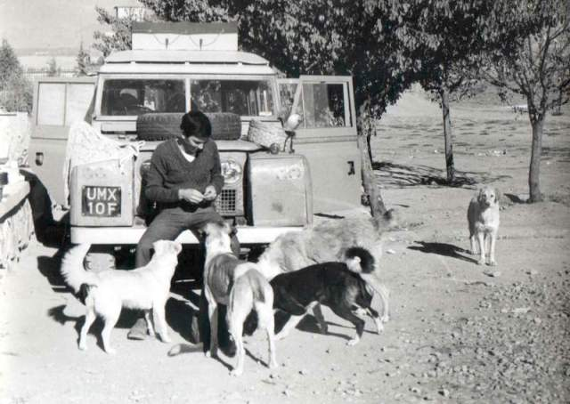 Here I am feeding the strays in Pakistan. during the overland drive in 1970. My concern for the welfare of dogs is not recent.