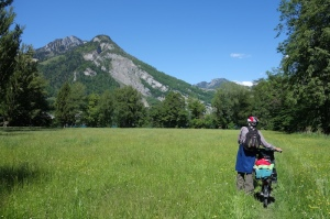 Through the wildflower meadow towards Walensee and the camp.