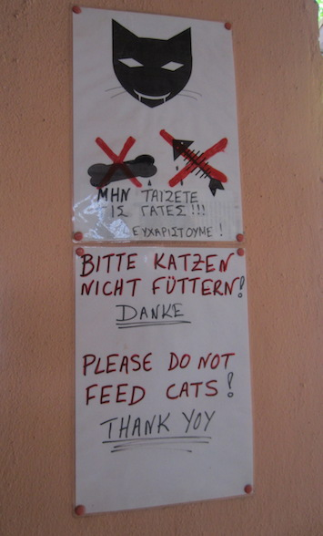 'Thank yoy, do not feed the cats!'