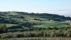 The countryside around Serres, reminiscent of England and Ireland.