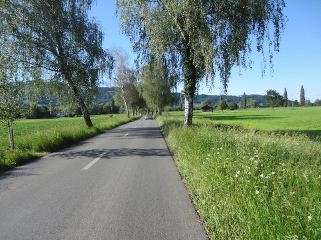 The road back to Rebstein.