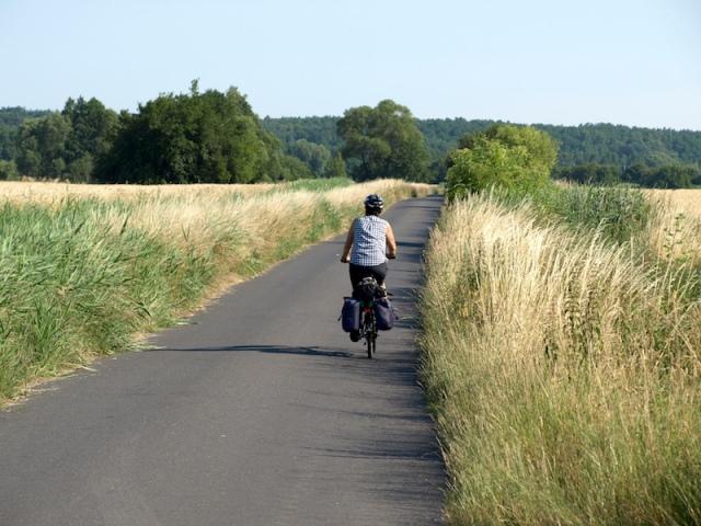 Detour through the wheatfields.