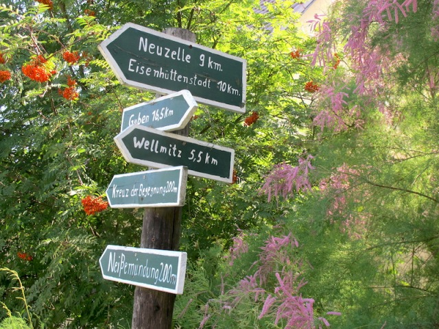 Hand-painted signpost amid the spring flowers.