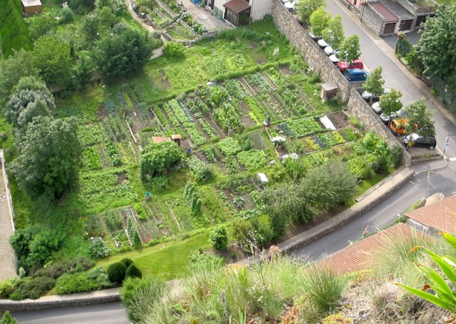 View of communal gardens from part way up the pathway of Chapel of Saint Michel d'Aigulhe.