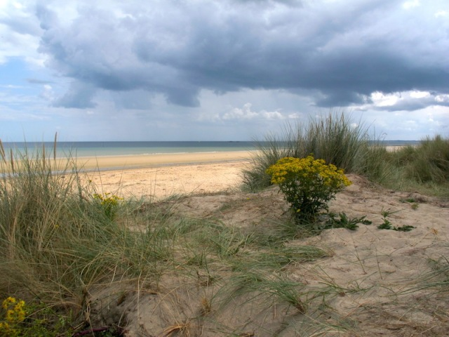 A quiet reflective spot in the dunes overlooking Utah Beach. quiet reflective spot in the dunes overlooking Utah Beach.
