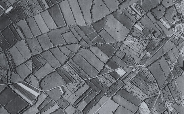 An aerial photograph of the hedgerows. Image from open-air exhibition Utah beach. Photographer unknown.