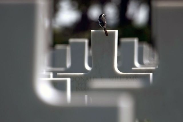 Lest we Forget, a creative image by Joel Saget. June 2009. American cemetery in Colleville-sur-Mer Omaha Beach. Image credit: Joel Saget/AFP/Getty Images via via http://vcepinc.org web page