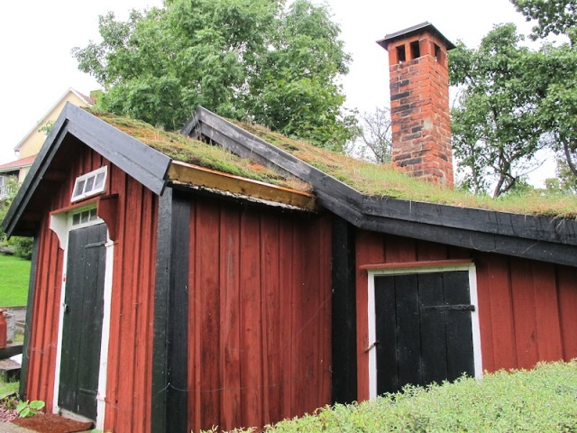 Another fine example of a sod roof.