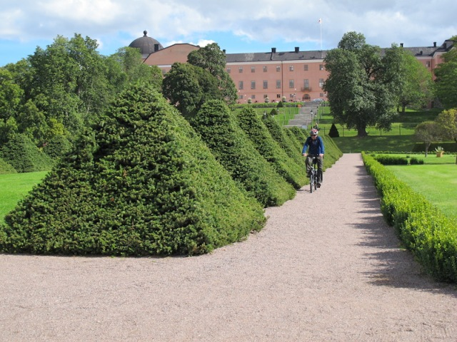 Riding by the pyramid topiaries. The cupola of the anatomical theatre can be seen in the distance to the left.