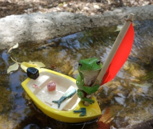 A ceramic tinnie (aluminium runabout), in the birdbath on our property.  The frog is real, it decided it wanted to go sailing.