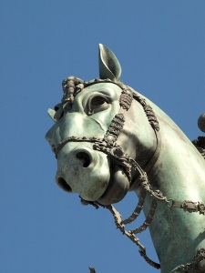 The beauty of the Equestrian Monument is in the detail.  Under the horse's eye there is even a vein.