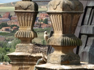 Ornate adornments on top of the tower, ideal places for white storks to nest.