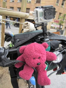 BBear securely strapped onto the handlebars of my bike ready to explore Salamanca.  Above BBear is a GoPro camera ready to record the events.