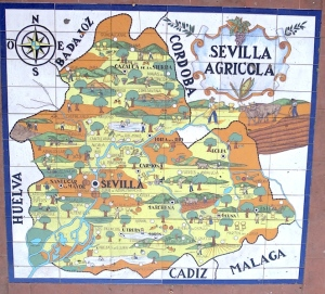 Sixty six hand painted tiles making up a map of the autonomous region of Andalusia.
