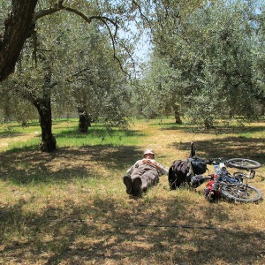 Having a blow (rest) in the olive grove.