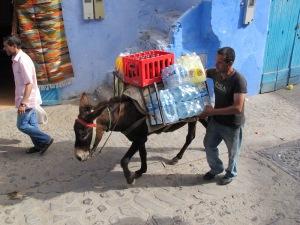 Ancient transport, bringing in 21st century goods.
