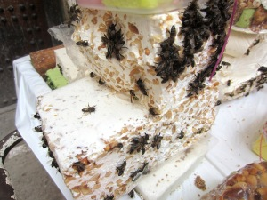 Bees on nougat. Flies transmit diseases to humans so maybe bees do it too.