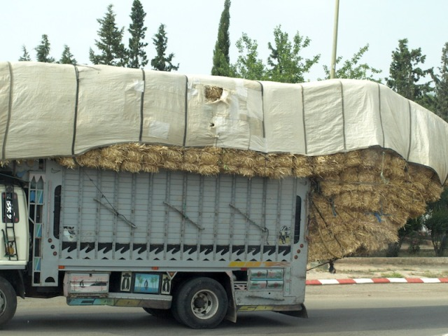 An overloaded truck carting hay. It's a tricky load as the overhanging bails were supported by ropes only.