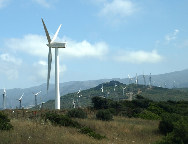 A wind farm along the side of the road we travelled today.