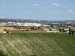 A wind farm (on distant hill), a village and grapes on the way to Cordoba.