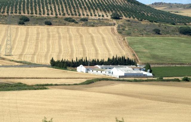 A farm near the chocolate loam field.
