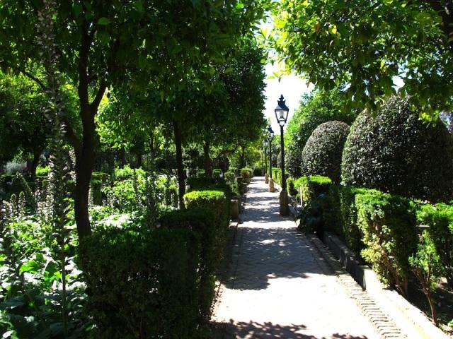 37 Alcazar garden